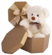 teddy in  abox